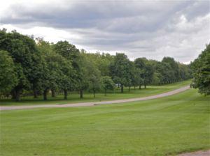 Long Walk Great Park