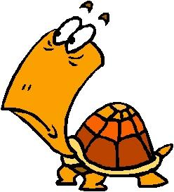 Worried Turtle