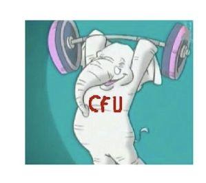 CFU ELEPHANT